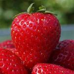 fraises-aliment-riche-fer